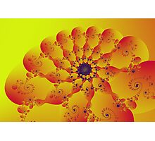 Floral Evolution 003.20.8.g4-280 Photographic Print