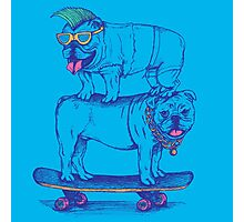 Double Dog Dare Photographic Print