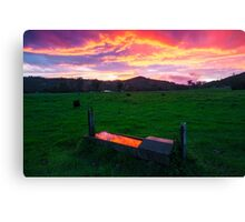 Bahrs Scrub Sunset Canvas Print