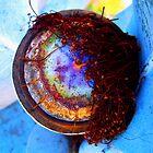 Fire Opal by Kerryn Rogers