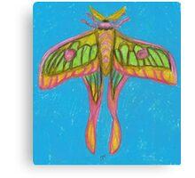 pastel moth Canvas Print