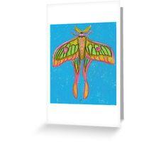 pastel moth Greeting Card