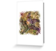 The Atlas Of Dreams - Color Plate 112 Greeting Card