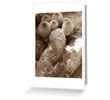 cactus 11 Greeting Card
