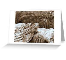cactus 15 Greeting Card