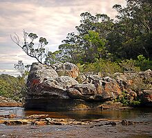 Carrington Falls: Near the Edge by George Petrovsky