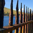 Golden Gate or Rusty Fence? by Andy Mulley