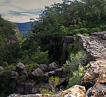 Carrington Falls: Over the Edge by George Petrovsky