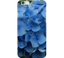 kathy's hydrangea, washington state.  iphone/samsung galaxy cover iPhone Case/Skin