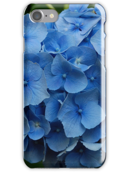 kathy's hydrangea, washington state.  iphone/samsung galaxy cover by mellychan