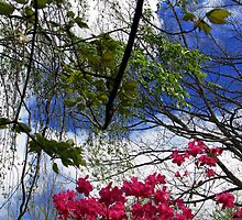 Flowering bush and trees by spiritsfreedom