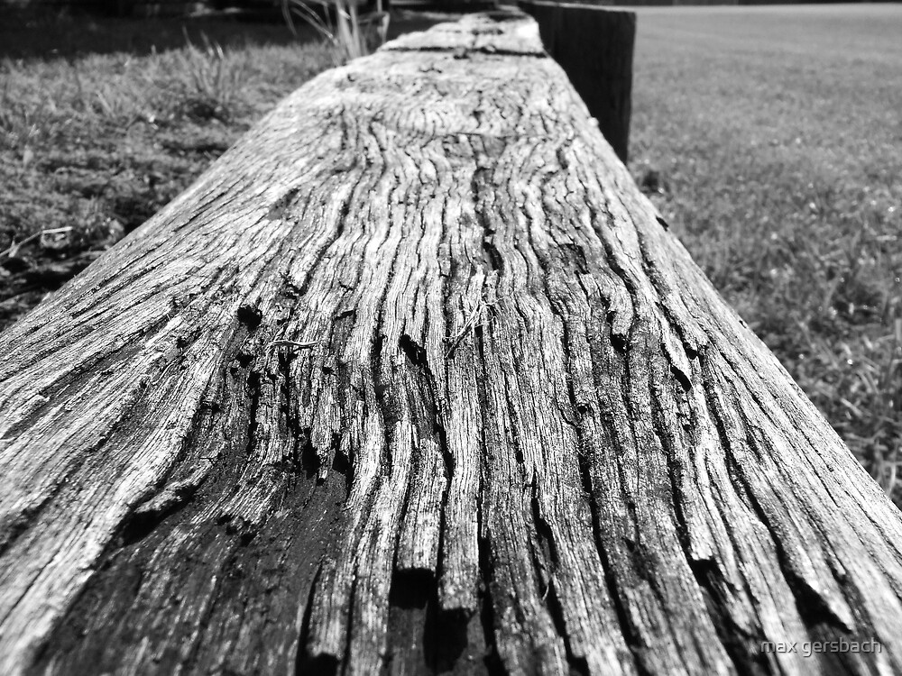lumber by max gersbach