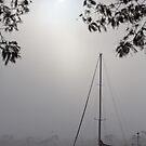 Boat in Fog, Franklin, Tasmania by Chris Cobern