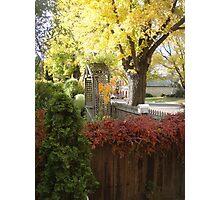 Autumn Colours in Ross, Tas Photographic Print