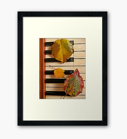 Autumn Leaf Trio on Piano Framed Print