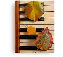 Autumn Leaf Trio on Piano Canvas Print