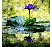 Spring Swirlings 2 Photographic Print