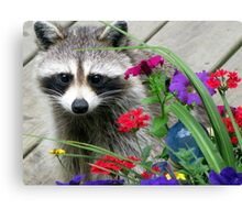 Sweets With Flowers Canvas Print