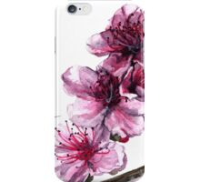 Peach Blossoms iPhone Case/Skin