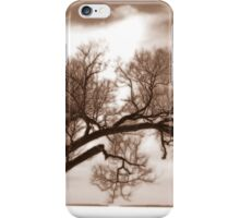 Winter storm iPhone Case/Skin