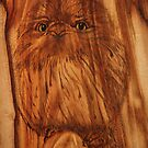 Pyrography by Robyn J. Blackford by aussiebushstick