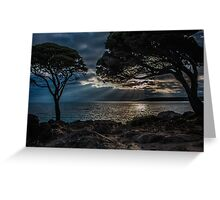 Rays of Morning Light Greeting Card