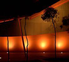 Australian National Museum by William Mason