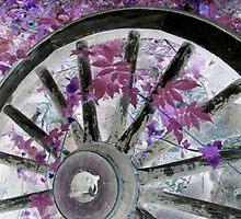 wheel by Sandra McNabb