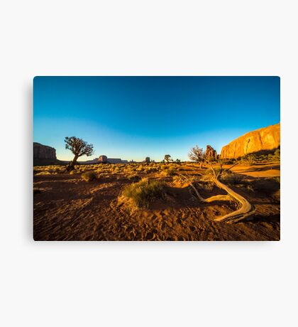 Monument Valley branch Canvas Print