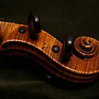 Violin Scroll on Green Velvet by Anna Lisa Yoder
