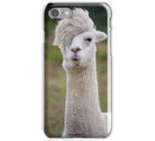 Scene Llama iPhone Case/Skin