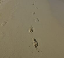 Footsteps in the Sand by Randy Bynon