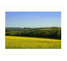 Dorset Countryside Art Print
