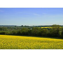 Dorset Countryside Photographic Print