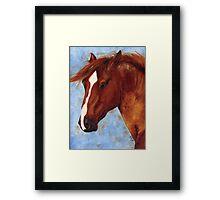 Chestnut Mustang Stallion Framed Print
