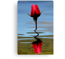 Reflection of Perfection Canvas Print