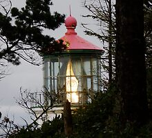 Heceta Head Lighthouse by Robert Baker