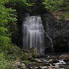 Meigs Falls by Sherri Hamilton