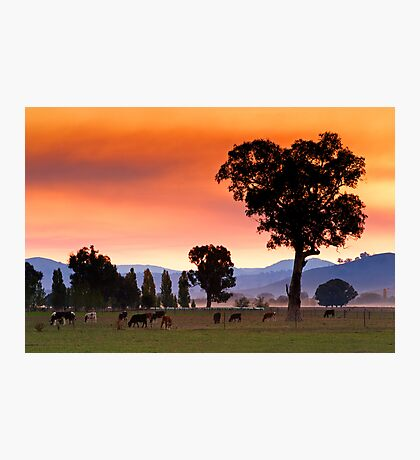Corryong Photographic Print