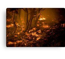 Burning Earth Canvas Print