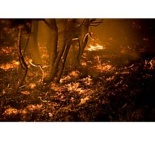 Burning Earth Photographic Print