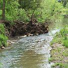 rippling stream by donald beynon