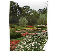 Flowerbeds Poster