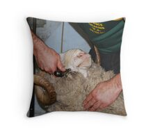 Shearing the Ram Throw Pillow