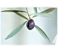 Lone Olive Poster
