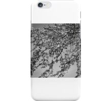 B&W nature iPhone Case/Skin