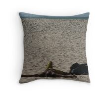 Max Dupain, eat your heart out!  Throw Pillow