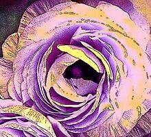 Rose by Martilena