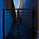 ALLEY PAINT by martin venit