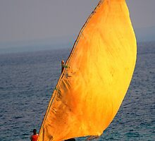 Dhow on the ocean by jacojvr